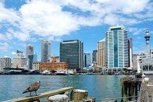 Autonoleggio Auckland