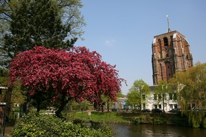 Autonoleggio Leeuwarden